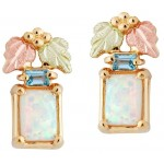Genuine Opal with Blue Topaz Earrings - by Landstrom's