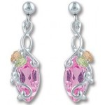 Multiple Stones - Including All Birthstones - Earrings - by Landstroms
