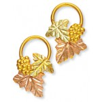 Earrings - Gold by Landstroms
